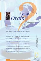 Down the Drain? by K-L-Designs