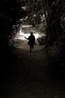 Chemin faisant by tifrize