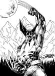 WOLVERINE: black and white by VAXION