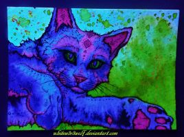 Psychedelic Cat Glow~ :for sale: by whitew3r3wolf