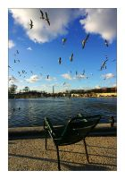 Tuilleries by br3w0k