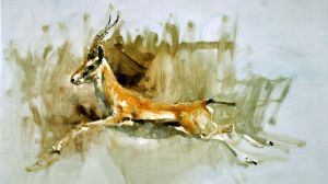 morning sketch : deer by alrasyid