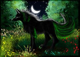 Dark Wolf by Snow-Body