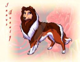 Belle - Collie by SapphireGamgee