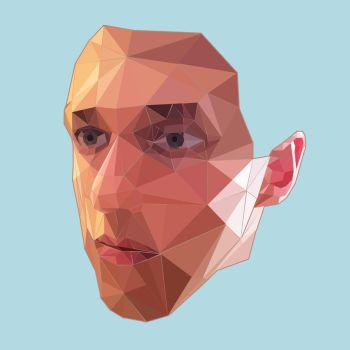 Low poly face by Follygon