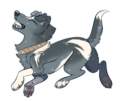 at: aki-the-wolf by meteorcrash