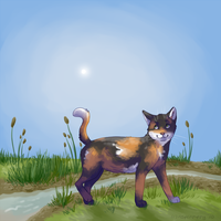 Stroll through Shadowclan by AspenPuppy