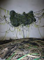 New Ropes by spoare153