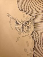 Owl Sketch by Tiefenbacher