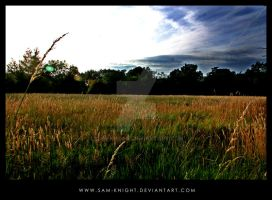 Fields -III- by sam-knight