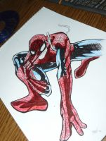 zsofi's drawing~2 (Spider-Man) by andi40