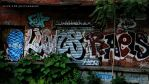 GRAFFITI in Brooklyn on abandoned building by SynfulSick