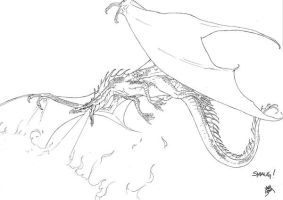 SMAUG by neurowing