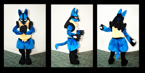Lucario Cosplay by Toriroz