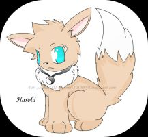 RQ Harold The Eevee by Sonic201000