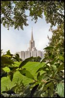 Jor. River Temple+ Forest View by JLFEclipse
