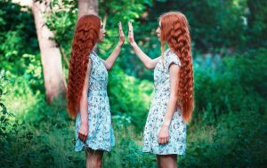 The Thirteenth Tale / Emmelina and Adeline March by palewinterrose