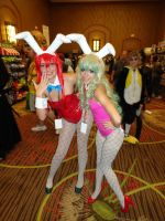 Yoko and Nia Bunny Suit 3 by Undead-Romance