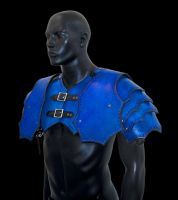 Shoulder Pauldron Harness by Azmal