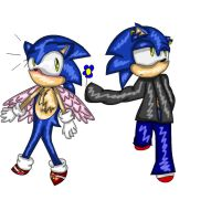 Sonic does have a sweet side by sonicfan1209