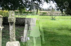 Here I Stand by snapshot19
