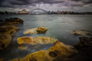 Lady Macquarie's Chair, Sydney by shaun-johnston