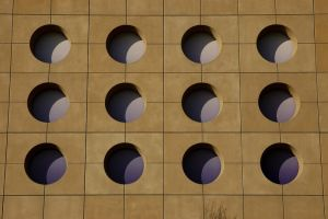 purple circles by Mitchography