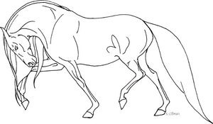 Line Art Andalusian by lunatteo