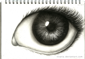 Charcoal Eye 3 by Tivaria