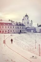 The Lithuanian winter by nellusatko