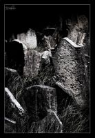 The Old Graveyard by DreamSand