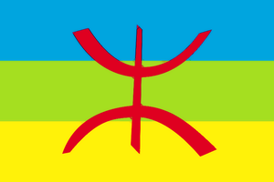 Berber Flag by Aminebjd