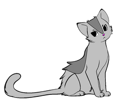 free cat adoptable, CLOSED by FrankinPoodle