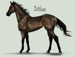 Remember Esther by sealle