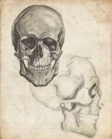 A Study in Skulls by Snuffles379