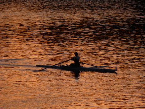 Morning Rower by Meggsy