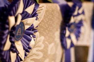 Blue Ribbons by aheria