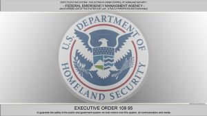 Homeland Security 10995 FEMA by Varani