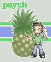 Psych: Shawn Spencer by Twilight-Deviant