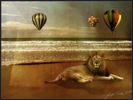 Lion at the beach by Joalita-lady