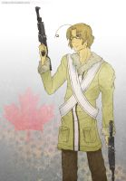 APH: Bringing Out The Guns by niirasri