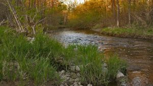 Little Suamico River by Overclock45