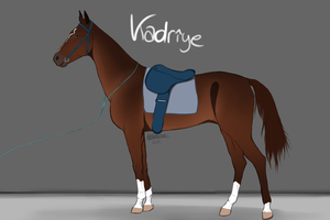 Kadriye by wingedbutt