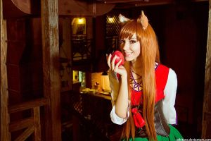 Horo - Spice and Wolf 3 by Chrome-sensei