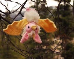 Honduran White Bat by Couch-stuffs