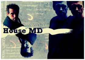 House Md collage by Owlnuny
