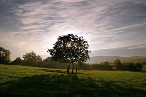 Sunrise on the South Downs by Andrew-and-Seven