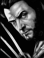 wolverine jackman by br475