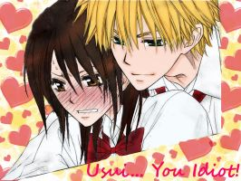Usui, You Idiot! by La-cruciatus