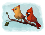 Mr and Mrs Cardinal by Ric-M